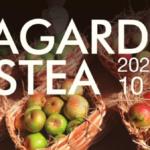 Sagardo Astea (semana de la sidra)